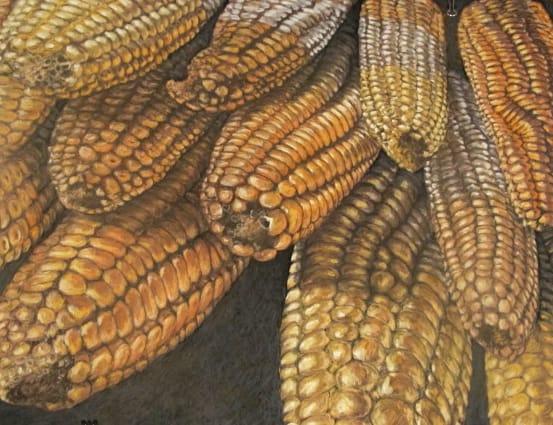 Corn, 2012, 50x65cm