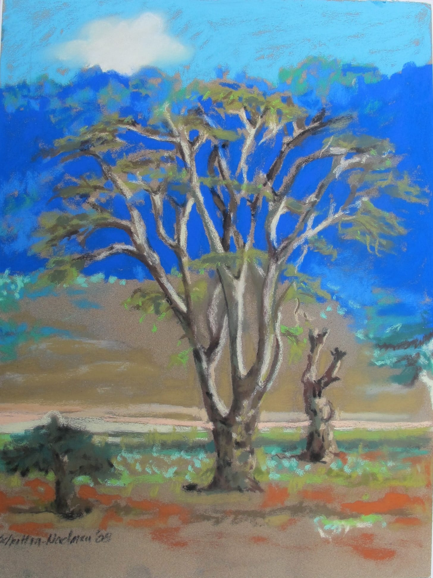 Ngorongoro, 2008, 30x40 cm